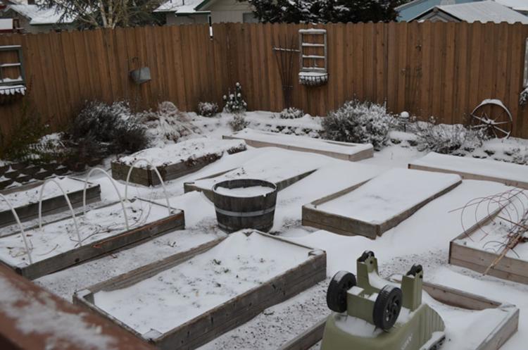 December-Garden-LOW-QUALITY